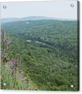 Tree Top Valley Acrylic Print