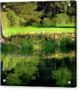 Tree With Lily Reflections Acrylic Print