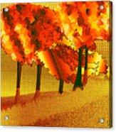 Treeport Acrylic Print