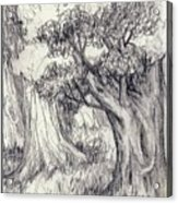 Trees 2 Acrylic Print