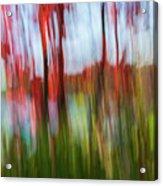 Trees And Lake Acrylic Print