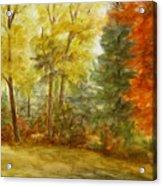 Trees At Fall Acrylic Print