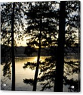 Trees By The Lake Acrylic Print
