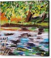 Trees Edge The Pond Acrylic Print