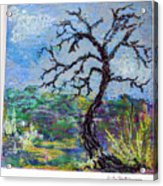 Tree's End Acrylic Print