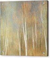 Trees Ethereal Grove Acrylic Print