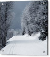 Trees Hills And Snow Acrylic Print