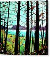 Trees In Fall Acrylic Print