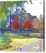 Trees In Park 1 Acrylic Print