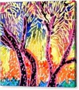 Trees In Summer Acrylic Print