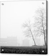 Trees In The Fog 2 Of 4 - Lombardy / Italy Acrylic Print