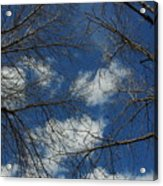 Trees In The Spring With Clouds Acrylic Print