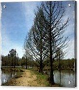 Trees In Water Garden Acrylic Print