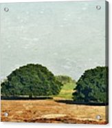 Trees On Field Acrylic Print