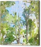Trees On Ski Island, Banana River, Cape Canaveral, Fl. Acrylic Print