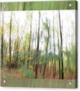 Trees On The Move Acrylic Print