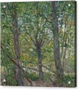 Trees Paris, July 1887 Vincent Van Gogh 1853  1890 Acrylic Print