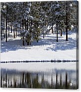 Trees Reflecting In Duck Pond In Colorado Snow Acrylic Print
