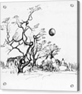 Trees rocks and a ball Acrylic Print