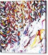 Trees To Celerina - St Moritz Acrylic Print
