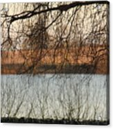 Trees With A Reflection Acrylic Print