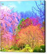 Trees With Color Acrylic Print