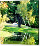 Trees With Mirror Lake 2 Acrylic Print