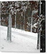 Tress Of Snow Acrylic Print