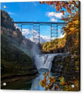 Tressel Over The High Falls Acrylic Print by Dick Wood