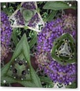 Triangle Surrounded Acrylic Print