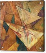 Triangulation Acrylic Print