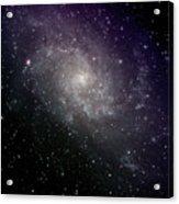 Triangulum Galaxy Acrylic Print