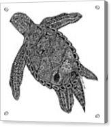Tribal Turtle I Acrylic Print by Carol Lynne