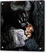 Tribute To Koko Acrylic Print