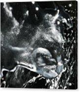 'trifecta Of Purity' Acrylic Print