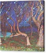 Trinity Tree By Moonlight Acrylic Print