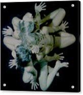 Trio.11 Acrylic Print