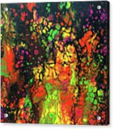 Trippin' In The 70's #13 Acrylic Print