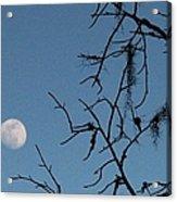 Trompe L Oeil Moon Acrylic Print