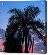 Tropic Sunset In Floirida Acrylic Print
