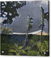 Tropic Wind Acrylic Print