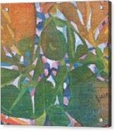 Tropical #6 Acrylic Print