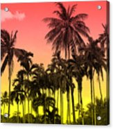 Tropical 9 Acrylic Print