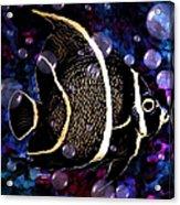 Tropical Angel Fish Acrylic Print