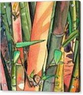 Tropical Bamboo Acrylic Print