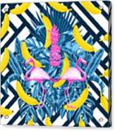 Tropical Banana Pink   Acrylic Print