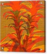 Syncopated Botanicals In Tangerine Orange Acrylic Print