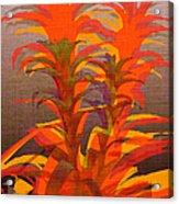 Syncopated Botanicals Multi Acrylic Print