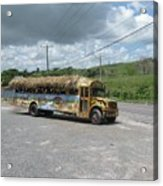 Tropical Bus Acrylic Print