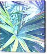 Tropical Dreams In Pastel Purple-blue Acrylic Print